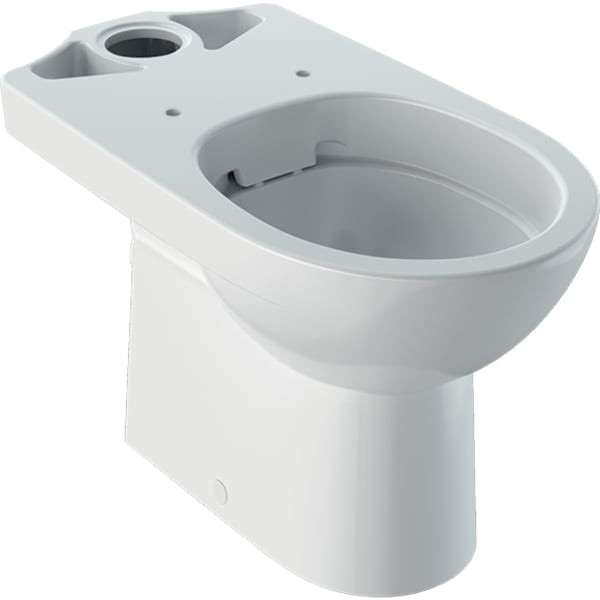 Vas wc Geberit Selnova, Rimfree